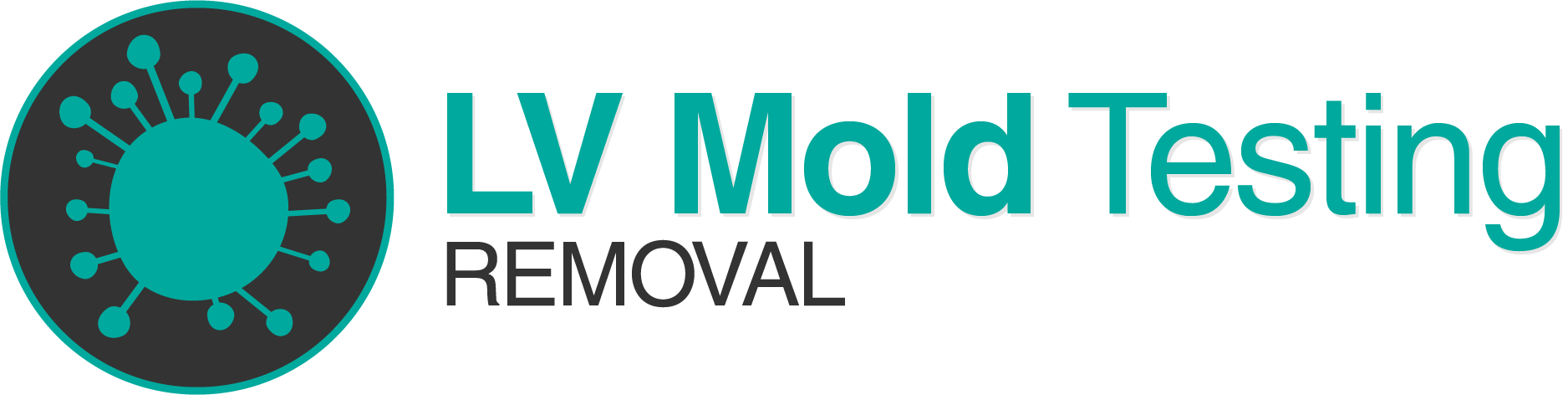 LV Mold Testing Removal